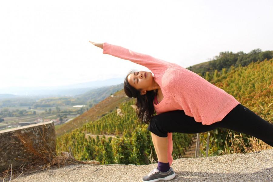 Février : au rythme du Hatha Vinyasa, yogathérapie et nouveau cours