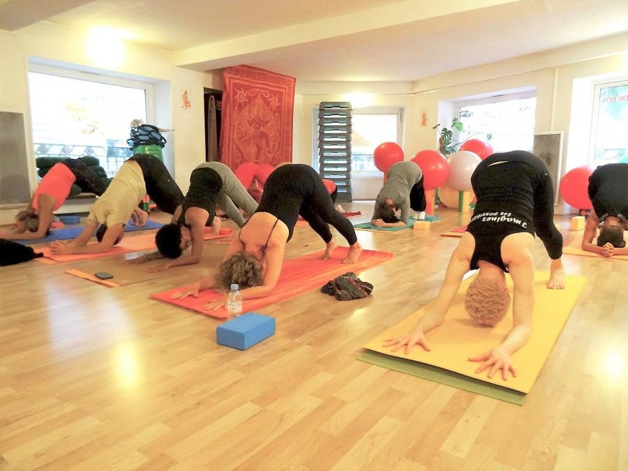 Orezen forrest yoga