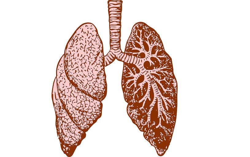 Booster votre système respiratoire en hiver avec Kapalbhati