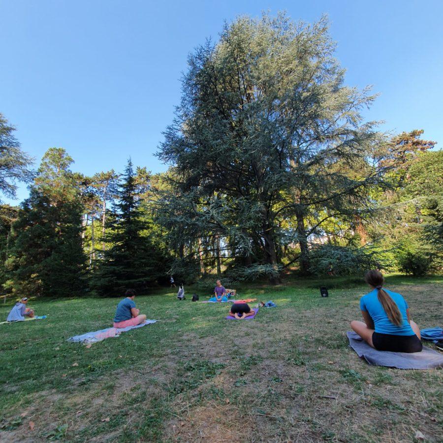 Les Dimanches Yoga en plein air gratuits en septembre